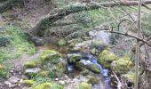 Randonnée A pied ROCLES - 07 Mont AIGU  04-04-17 - Photo 6