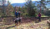 Trail Walk LANS-EN-VERCORS - 38_Lans_Cordeliere_Croix Chabaud  - Photo 6
