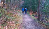 Trail Walk LANS-EN-VERCORS - 38_Lans_Cordeliere_Croix Chabaud  - Photo 3