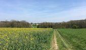 Trail Walk Assesse - Balade à Sorinne-la-Longue - Photo 2