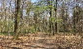 Trail Walk Assesse - Balade à Sorinne-la-Longue - Photo 5