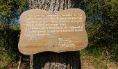 Trail Walk LA REMAUDIERE - Divatte et Petit Anjou  - Photo 2