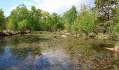 Trail Walk NOISY-SUR-ECOLE - pso-170429 - RECO Coulisses3pi - Photo 6
