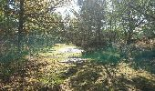 Trail Walk NOISY-SUR-ECOLE - pso-170429 - RECO Coulisses3pi - Photo 2