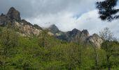 Trail Walk QUENZA - chemin corse - Photo 1