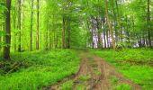 Randonnée Marche LONGPONT - en foret de Retz_54_Longpont_étang de Fleury_AR - Photo 40