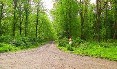Randonnée Marche LONGPONT - en foret de Retz_54_Longpont_étang de Fleury_AR - Photo 149