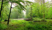 Randonnée Marche LONGPONT - en foret de Retz_54_Longpont_étang de Fleury_AR - Photo 27
