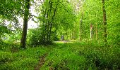 Randonnée Marche LONGPONT - en foret de Retz_54_Longpont_étang de Fleury_AR - Photo 65