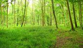 Randonnée Marche LONGPONT - en foret de Retz_54_Longpont_étang de Fleury_AR - Photo 144