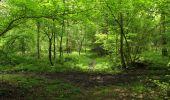 Randonnée Marche LONGPONT - en foret de Retz_54_Longpont_étang de Fleury_AR - Photo 167