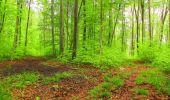 Randonnée Marche LONGPONT - en foret de Retz_54_Longpont_étang de Fleury_AR - Photo 101
