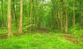 Randonnée Marche LONGPONT - en foret de Retz_54_Longpont_étang de Fleury_AR - Photo 41