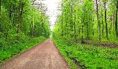 Randonnée Marche LONGPONT - en foret de Retz_54_Longpont_étang de Fleury_AR - Photo 126