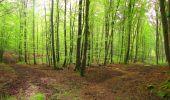 Randonnée Marche LONGPONT - en foret de Retz_54_Longpont_étang de Fleury_AR - Photo 50