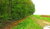 Randonnée Marche LONGPONT - en foret de Retz_54_Longpont_étang de Fleury_AR - Photo 70