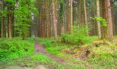 Randonnée Marche LONGPONT - en foret de Retz_54_Longpont_étang de Fleury_AR - Photo 2