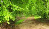 Randonnée Marche LONGPONT - en foret de Retz_54_Longpont_étang de Fleury_AR - Photo 69