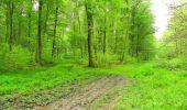 Randonnée Marche LONGPONT - en foret de Retz_54_Longpont_étang de Fleury_AR - Photo 129