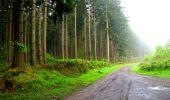 Randonnée Marche LONGPONT - en foret de Retz_54_Longpont_étang de Fleury_AR - Photo 3