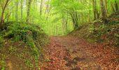 Randonnée Marche LONGPONT - en foret de Retz_54_Longpont_étang de Fleury_AR - Photo 117