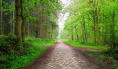 Randonnée Marche LONGPONT - en foret de Retz_54_Longpont_étang de Fleury_AR - Photo 18