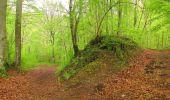 Randonnée Marche LONGPONT - en foret de Retz_54_Longpont_étang de Fleury_AR - Photo 116