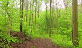 Randonnée Marche LONGPONT - en foret de Retz_54_Longpont_étang de Fleury_AR - Photo 88