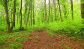 Randonnée Marche LONGPONT - en foret de Retz_54_Longpont_étang de Fleury_AR - Photo 100