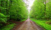 Randonnée Marche LONGPONT - en foret de Retz_54_Longpont_étang de Fleury_AR - Photo 26