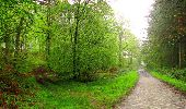 Randonnée Marche LONGPONT - en foret de Retz_54_Longpont_étang de Fleury_AR - Photo 12