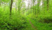 Randonnée Marche LONGPONT - en foret de Retz_54_Longpont_étang de Fleury_AR - Photo 93