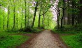 Randonnée Marche LONGPONT - en foret de Retz_54_Longpont_étang de Fleury_AR - Photo 15