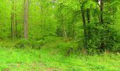 Randonnée Marche LONGPONT - en foret de Retz_54_Longpont_étang de Fleury_AR - Photo 64