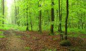 Randonnée Marche LONGPONT - en foret de Retz_54_Longpont_étang de Fleury_AR - Photo 46