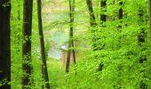 Randonnée Marche LONGPONT - en foret de Retz_54_Longpont_étang de Fleury_AR - Photo 104