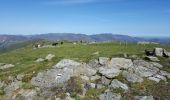 Trail Other activity SAINT-ETIENNE-DE-BAIGORRY - TDP N°5 ST ÉTIENNE DE BAIGORRY ST JEAN PIEDS DE PORT - Photo 6