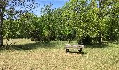 Trail Walk Tellin - Balade à Resteigne - Photo 5