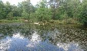 Trail Walk NOISY-SUR-ECOLE - M&R-170520 - Coulisses3pignons - Photo 5