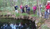 Trail Walk NOISY-SUR-ECOLE - M&R-170520 - Coulisses3pignons - Photo 3