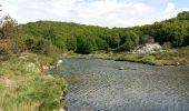 Trail Walk LE PONT-DE-MONTVERT - Tour Lozère étape 5 - Photo 11
