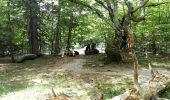Trail Walk LE PONT-DE-MONTVERT - Tour Lozère étape 5 - Photo 4