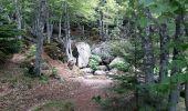 Trail Walk LE PONT-DE-MONTVERT - Tour Lozère étape 5 - Photo 3