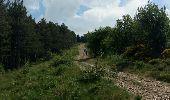 Trail Walk LE PONT-DE-MONTVERT - Tour Lozère étape 5 - Photo 1