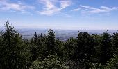 Randonnée Marche OTTROTT - Le circuit sud du Mur Païen - Photo 2