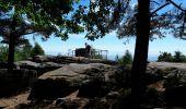 Randonnée Marche OTTROTT - Le circuit sud du Mur Païen - Photo 14