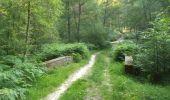 Trail Walk GAMBAISEUIL - _Entre forêt et clairières autour de Gambaiseuil - Photo 2