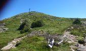 Randonnée Marche BOREE - Tence-170619 - MontMézinc - Photo 7