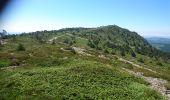 Randonnée Marche BOREE - Tence-170619 - MontMézinc - Photo 6