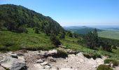 Randonnée Marche BOREE - Tence-170619 - MontMézinc - Photo 3